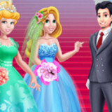 Princesses Bride Competition